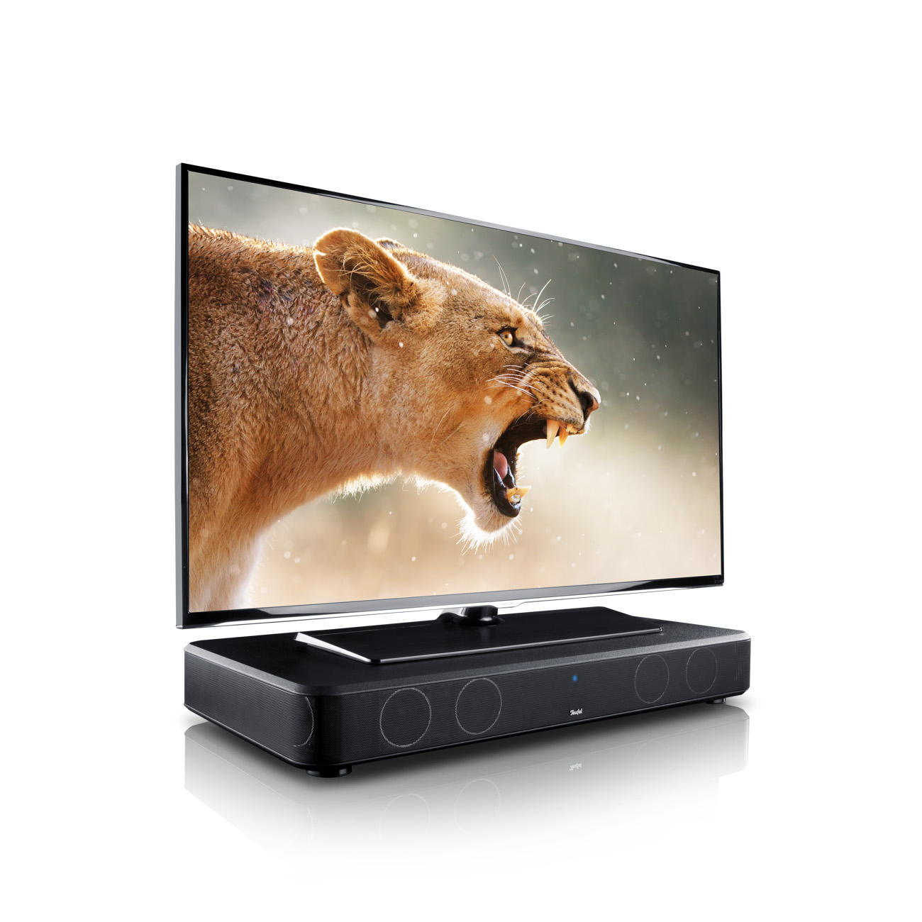 cinebase-flatscreen-lion-on-white-1300x1300x72