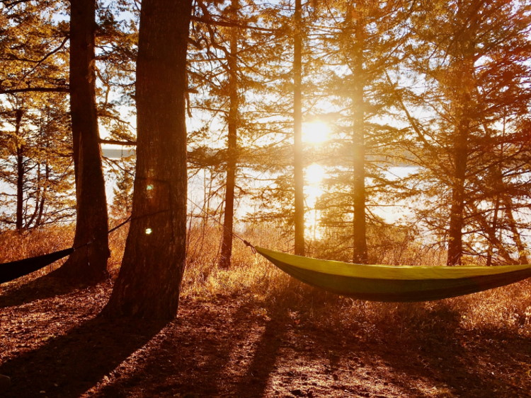 Zwei Hängematten zwischen Bäumen am See bei Sonnenuntergang